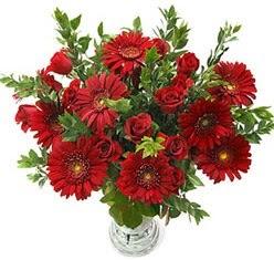 5 adet kirmizi gül 5 adet gerbera aranjmani  Hatay hediye sevgilime hediye çiçek