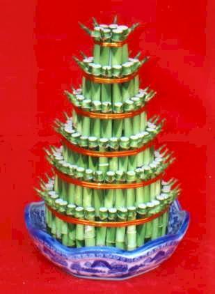 Lucky Bamboo sans melegi çiçegi  Hatay kaliteli taze ve ucuz çiçekler
