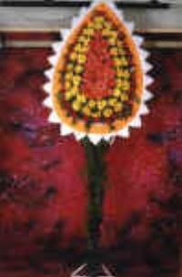 Hatay uluslararası çiçek gönderme  dügün açilis çiçekleri  Hatay 14 şubat sevgililer günü çiçek