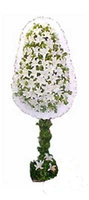 Hatay çiçek servisi , çiçekçi adresleri  nikah , dügün , açilis çiçek modeli  Hatay online çiçekçi , çiçek siparişi