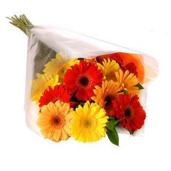 Karisik renklerde gerbera buketi  Hatay İnternetten çiçek siparişi