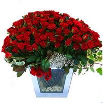 Hatay kaliteli taze ve ucuz çiçekler   101 adet kirmizi gül aranjmani