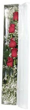 Hatay çiçek servisi , çiçekçi adresleri   5 adet gülden kutu güller