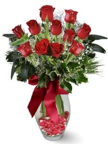 9 adet gül  Hatay çiçek mağazası , çiçekçi adresleri  kirmizi gül
