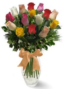 15 adet vazoda renkli gül  Hatay çiçek mağazası , çiçekçi adresleri