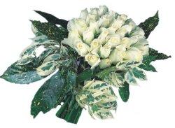 Hatay güvenli kaliteli hızlı çiçek  9 Beyaz gül Özel kisiler için