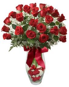 17 adet essiz kalitede kirmizi gül  Hatay ucuz çiçek gönder