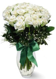 19 adet essiz kalitede beyaz gül  Hatay kaliteli taze ve ucuz çiçekler