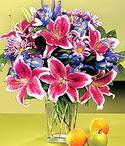 Hatay ucuz çiçek gönder  Sevgi bahçesi Özel  bir tercih