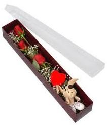 kutu içerisinde 3 adet gül ve oyuncak  Hatay İnternetten çiçek siparişi
