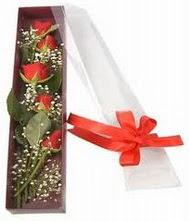 kutu içinde 5 adet kirmizi gül  Hatay güvenli kaliteli hızlı çiçek