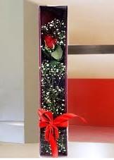 kutu içinde tek kirmizi gül  Hatay çiçek satışı