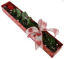 Tek kirmizi gül kutu içerisinde  Hatay çiçekçi mağazası