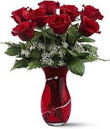 Vazo içinde 8 adet kirmizilar içinde güller  Hatay güvenli kaliteli hızlı çiçek