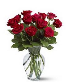 Hatay çiçek siparişi vermek  cam yada mika vazoda 10 kirmizi gül