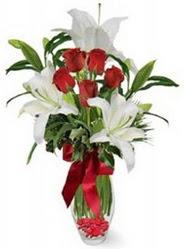 Hatay yurtiçi ve yurtdışı çiçek siparişi  5 adet kirmizi gül ve 3 kandil kazablanka