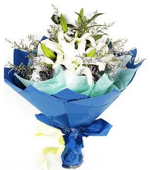 Hatay çiçek gönderme  4 adet dal kazablankadan görsel buket