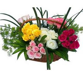 Hatay anneler günü çiçek yolla  35 adet rengarenk güllerden sepet tanzimi