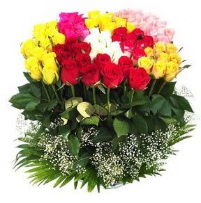 Hatay ucuz çiçek gönder  51 adet renkli güllerden aranjman tanzimi