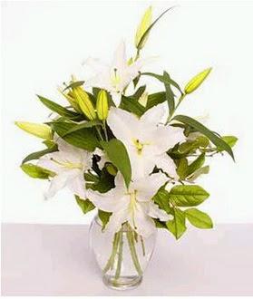 Hatay cicek , cicekci  2 dal cazablanca vazo çiçeği