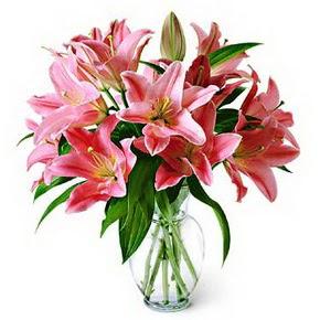 3 dal kazablanka görsel vazosu  Hatay güvenli kaliteli hızlı çiçek