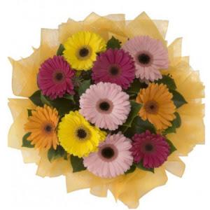 Hatay internetten çiçek siparişi  11 adet karışık gerbera çiçeği buketi