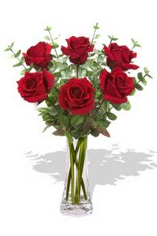 Hatay çiçek online çiçek siparişi  6 kırmızı gül vazosu