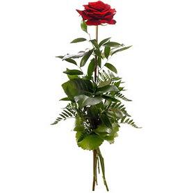 Hatay internetten çiçek satışı  1 adet kırmızı gülden buket