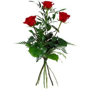 Hatay çiçek gönderme sitemiz güvenlidir  3 adet kırmızı gülden buket