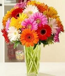 Hatay çiçek , çiçekçi , çiçekçilik  15 adet gerbera çiçek vazosu