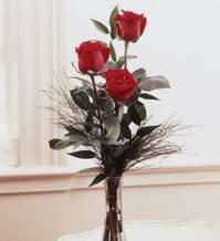 Hatay çiçek mağazası , çiçekçi adresleri  Vazoda 3 adet güzel gül