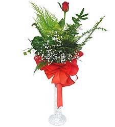 Hatay çiçek gönderme  Cam vazoda masum tek gül