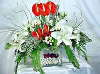 Hatay ucuz çiçek gönder  Anthurim Kazablanka  gül