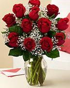Sevgilime hediye 9 adet 1.ci kalite gül  Hatay çiçek gönderme