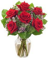 Kız arkadaşıma hediye 6 kırmızı gül  Hatay güvenli kaliteli hızlı çiçek