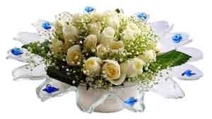 Hatay çiçek satışı  11 adet Beyaz güller özel cam tanzim