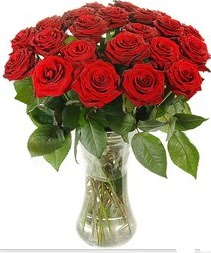 Hatay ucuz çiçek gönder  Vazoda 15 adet kırmızı gül tanzimi