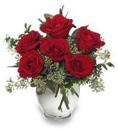 Vazo içerisinde 5 adet kırmızı gül  Hatay çiçek online çiçek siparişi