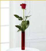 Vazo içerisinde 1 adet kırmızı gül  Hatay güvenli kaliteli hızlı çiçek