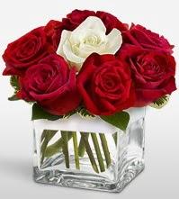 Tek aşkımsın çiçeği 8 kırmızı 1 beyaz gül  Hatay çiçek gönderme sitemiz güvenlidir