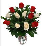 Vazo içerisinde 6 kırmızı 6 beyaz gül  Hatay hediye sevgilime hediye çiçek