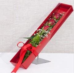 Kutu içerisinde 3 adet kırmızı gül  Hatay online çiçekçi , çiçek siparişi