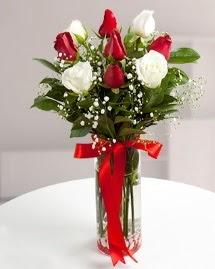 5 kırmızı 4 beyaz gül vazoda  Hatay İnternetten çiçek siparişi
