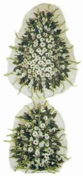 Hatay kaliteli taze ve ucuz çiçekler  Model Sepetlerden Seçme 3