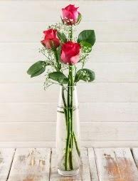 Cam içerisinde 3 kırmızı gül  Hatay uluslararası çiçek gönderme