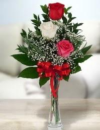 Camda 2 kırmızı 1 beyaz gül  Hatay anneler günü çiçek yolla