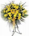 Hatay çiçek siparişi sitesi  Sari kazablanka Ferforje