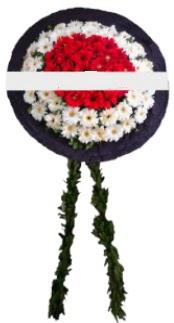 mozele çiçeği  Hatay çiçekçi telefonları