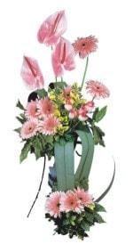 Hatay çiçekçi mağazası  Pembe Antoryum Harikalar Rüyasi