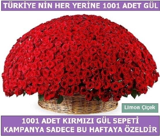 1001 Adet kırmızı gül Bu haftaya özel  Hatay internetten çiçek siparişi
